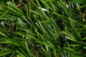 iarba-artificiala