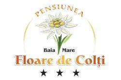 Floare de Colti Baia Mare