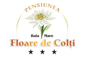 Floare de Colti Baia Mare