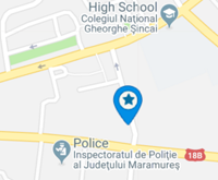ANDRADA POP - Cabinet Acupunctura Baia Mare - Infoharta Medicina