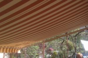 parasolar