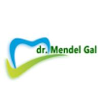 Dr. Mendel Gal