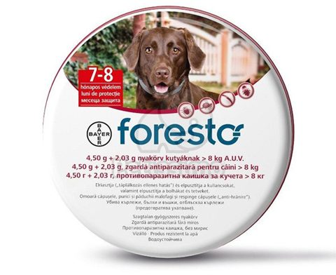 FORESTO-large-dogs-500x392px