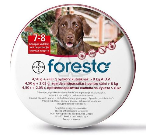 FORESTO-large-dogs-600x450px