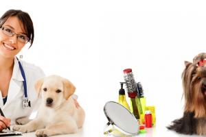 medicina-veterinara-si-toaletaj-cluj