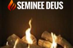 Seminee Deus Bucuresti - Seminee, focare, cosuri, sobe - vanzare, montaj