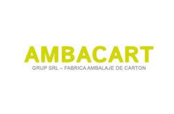 AMBACART GRUP SRL - Producator Ambalaje de Carton, Cutii carton, Role si Placi carton